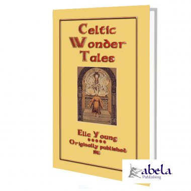 Celtic Wonder Tales ebook